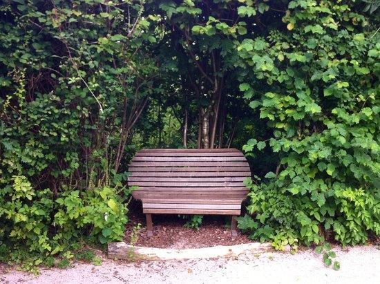 un autre banc dans un coin bucolique picture of jardin. Black Bedroom Furniture Sets. Home Design Ideas