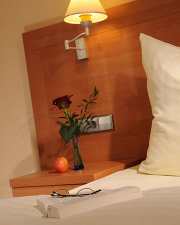 Hilden, Germany: Business Single Room