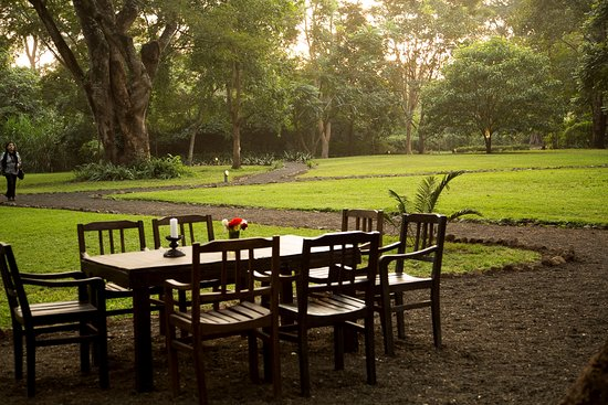 Rivertrees Country Inn: Outdoor seating by the lush lawn.