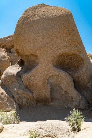 Twentynine Palms, Kaliforniya: Skull Rock