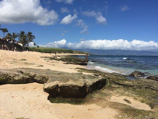 Paia, هاواي: Ho'okipa Beach