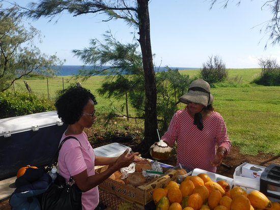 Paia, HI: Vendor selling fruit and drinks