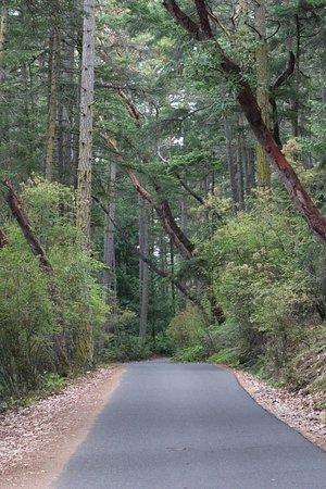 Anacortes, WA: part of loop road