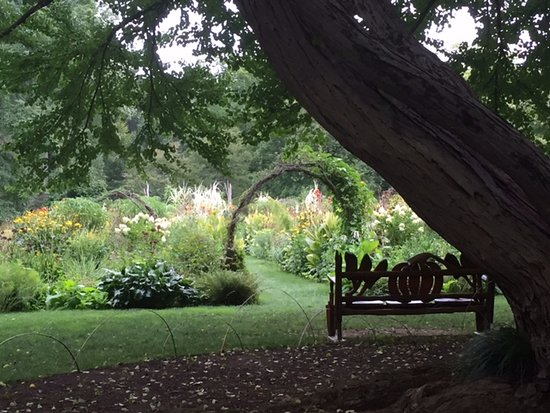 Wayne, Pensylwania: peaceful spot - the cutting garden