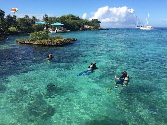 Bayahibe, Dominican Republic: Discover scuba diving !
