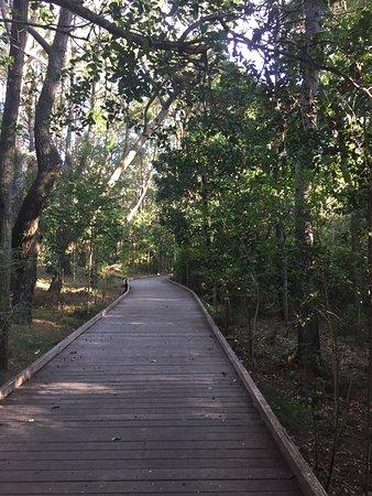 Suffolk Park, Austrália: photo6.jpg