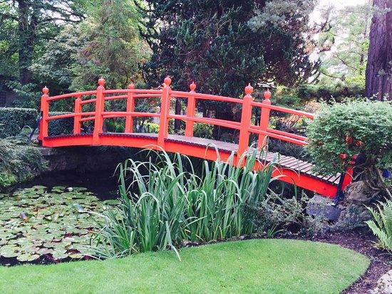 Irish National Stud & Gardens