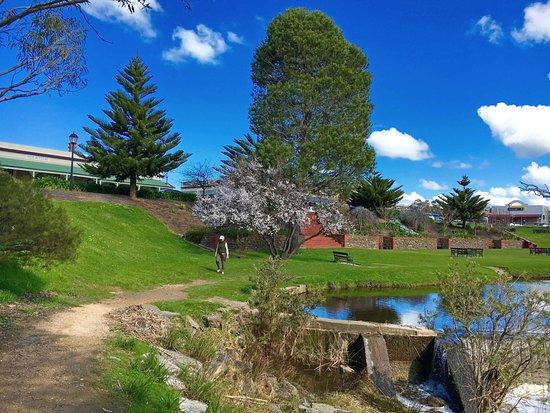 Strathalbyn, Australia: Lovely park