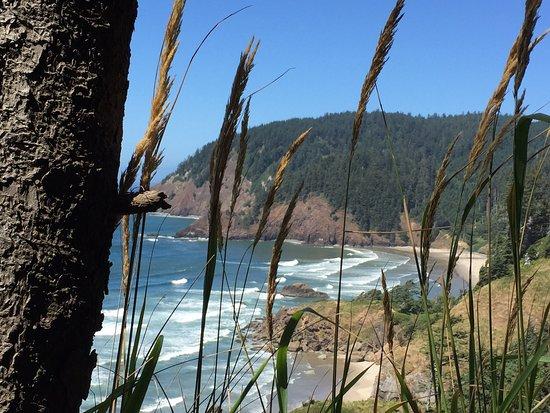 Oregon Coast: photo7.jpg