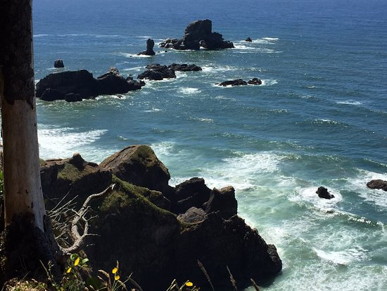 Oregon Coast: photo8.jpg