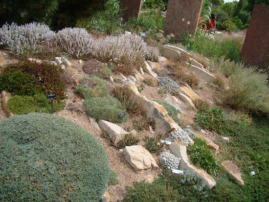 Denver Botanic Gardens: Alpine Rock Garden