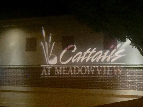 The Meadows Restaurant: photo0.jpg