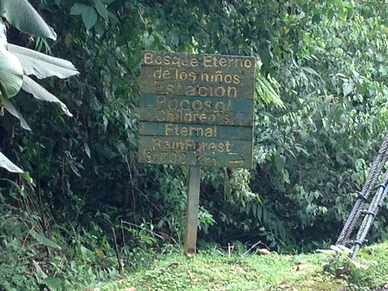 Children's Eternal Rain Forest : The sign tells us we're not too far away, but it is not safe.