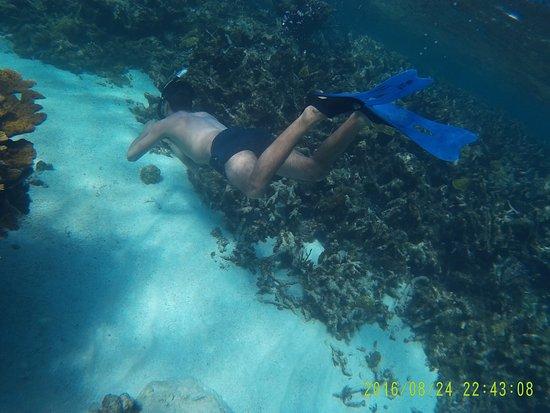Caye Caulker, Belize: photo6.jpg