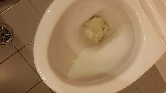 أبولو هوتل أوكلاند: Toilet won't flush !!