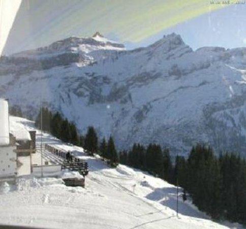 Les Diablerets, سويسرا: Hotel les Sources Diablerets Ski