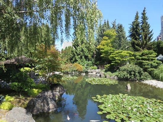 Kasugai Japanese Garden: Kasugai garden
