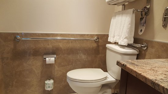 Holiday Inn L.I. City - Manhattan View: Bars are installed in bathroom to assist with disabled guests