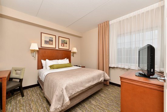 Bluffton, Carolina Selatan: Suite