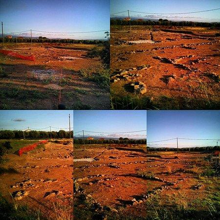 Area archeologica di Terina