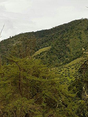 San Gerardo de Dota, كوستاريكا: IMG-20160825-WA0016_large.jpg