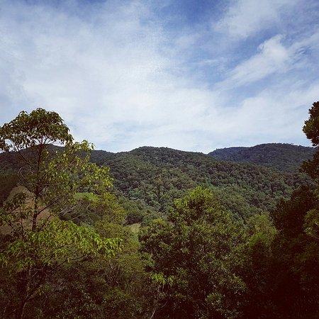 San Gerardo de Dota, كوستاريكا: IMG_20160825_093453_large.jpg