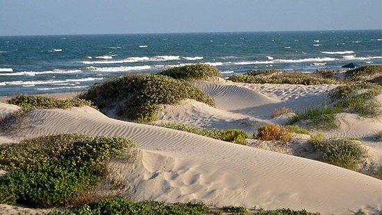 Padre Island National Seashore: photo1.jpg