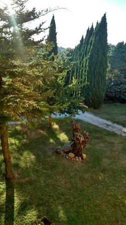 Mondaino, Italien: IMG_20160825_184257476_HDR_large.jpg