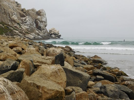 456 Embarcadero Inn & Suites: Local Surf