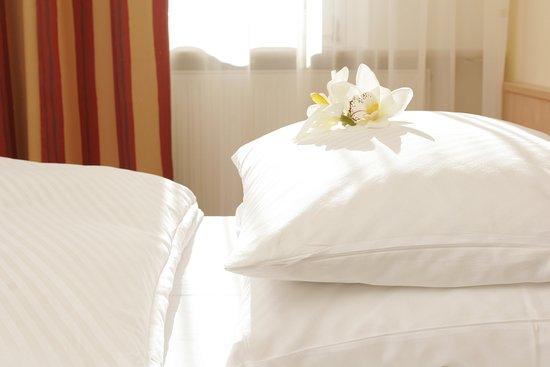 Gaufelden, Tyskland: Business Comfort Double Room