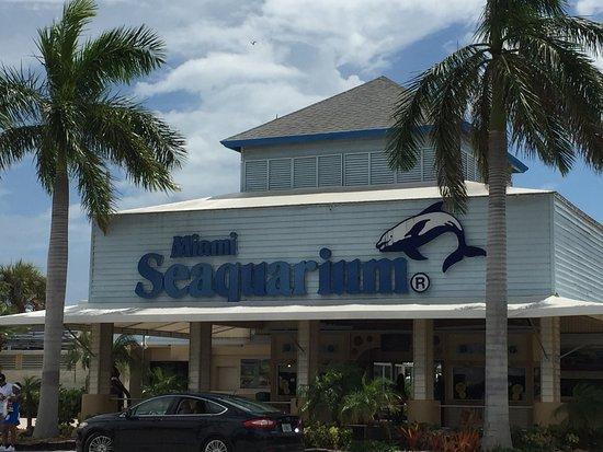 Miami Seaquarium: photo0.jpg