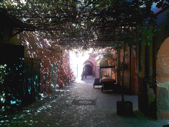 Ryad El Borj: vicolo che porta all'ingresso del rjad