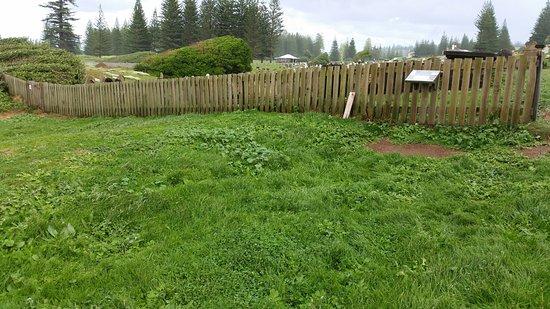 Kingston, Australia: murderers mound