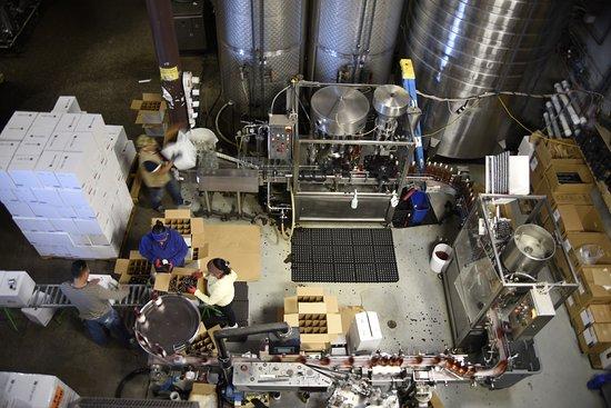 Turner, Oregón: The whole bottling operation. Super interesting