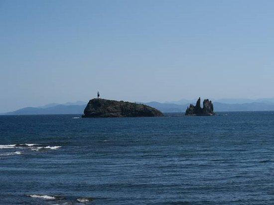 Mutsu, Japan: 鯨のような形にみえましたが、鯛島(弁天島)