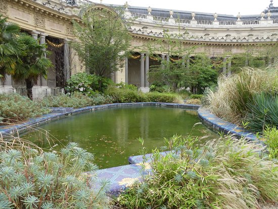 bassin du jardin photo de caf le jardin du petit palais paris tripadvisor. Black Bedroom Furniture Sets. Home Design Ideas