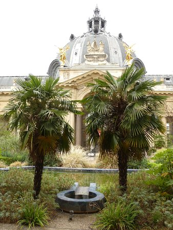 Picture of cafe le jardin du petit palais paris for Cafe du jardin london