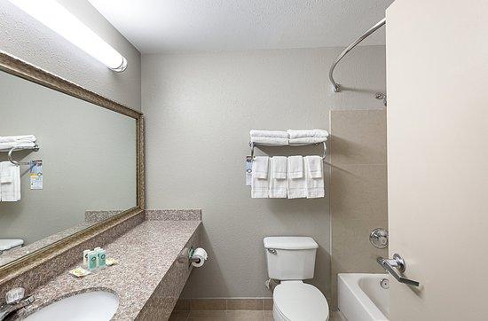เมสกีต, เท็กซัส: Queen guest room
