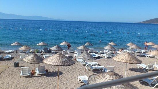 Yaliciftlik, Turquia: Yalıçiftlik Belediye Plajı