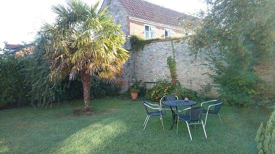 Meare Manor: DSC_0580_large.jpg