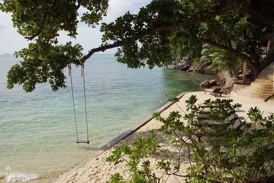 Cerf Island, Îles Seychelles : the beach with the swing