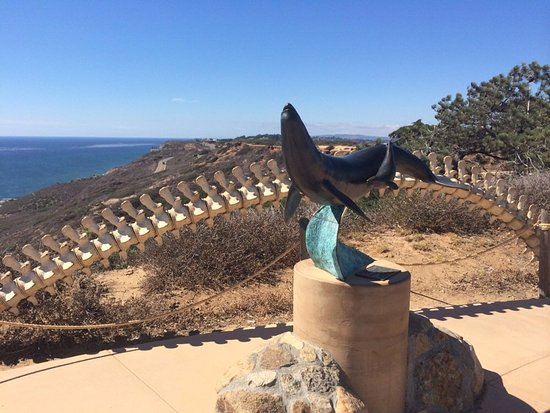 Cabrillo National Monument: Cabrillo3