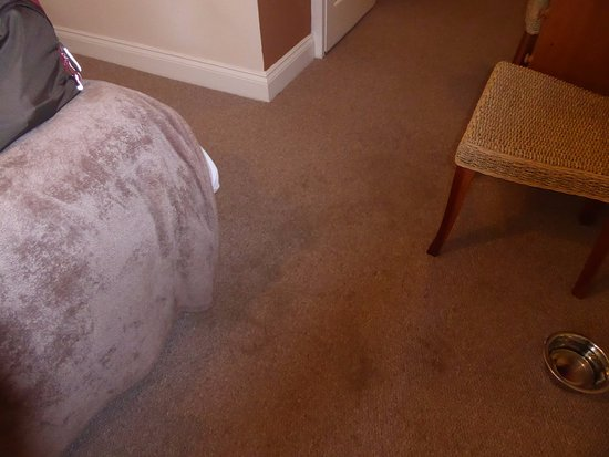 Worth, UK: Carpet with stains