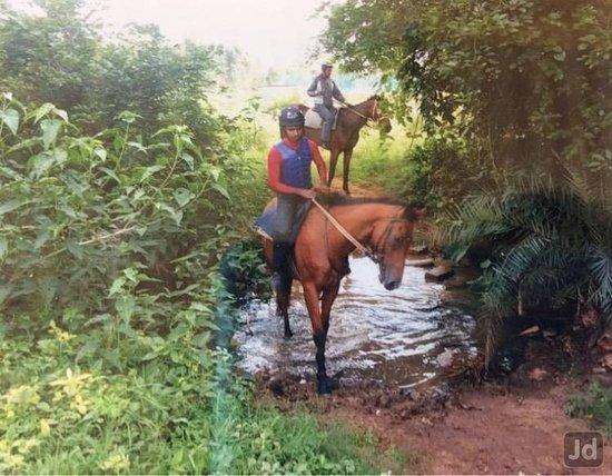 Modern Horse Riding School