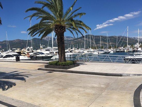 Tivat Municipality, مونتينيغرو: Porto Montenegro