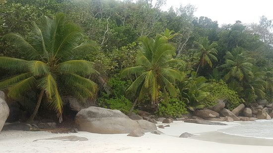 Anse Georgette: 20160809_121423_large.jpg