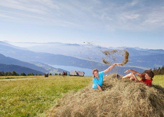Lendorf, ออสเตรีย: Hiking