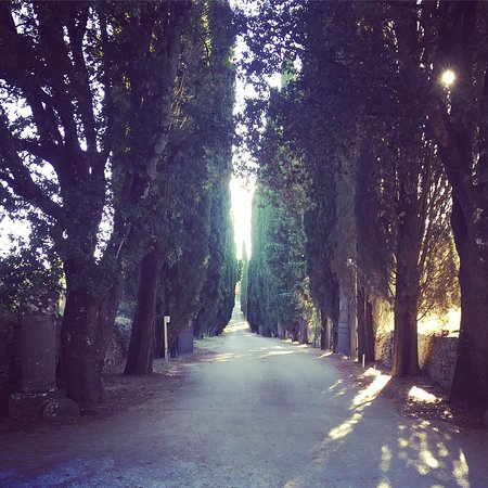 Vagliagli, Italien: photo0.jpg