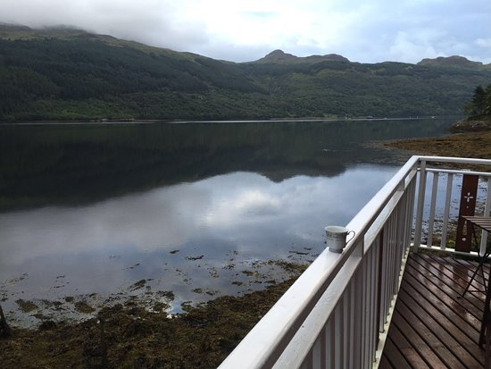 Loch Goil, UK: from summerhouse, otters, seals and porpoises were playing in the Loch just yards from here