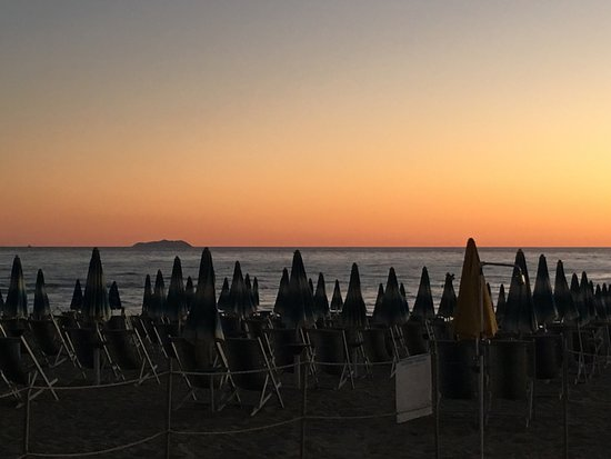 Frittino e gorgona sullo sfondo - Foto di Bagno Mistral, Tirrenia ...